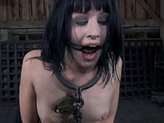 Gal in latex dress gets cunt and anal prodding